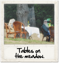 Tables on the meadow