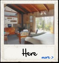 Cabin 3 Here