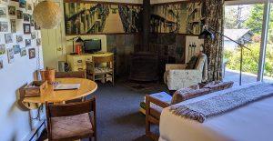 Cabin 5 Read decor