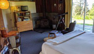 Cabin 11 Curious decor